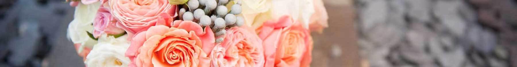 Sophies Flowers
